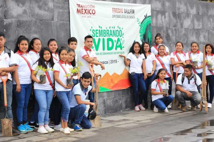 siembre chiltepec (5)
