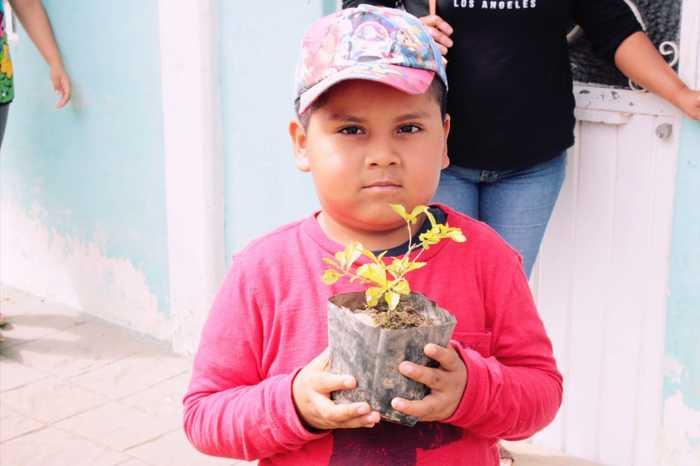 siembre chiltepec (7)
