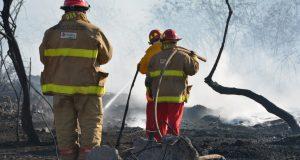 Sofocan bomberos de Pemex y de Protección Civil incendio en pastizales en Salina Cruz