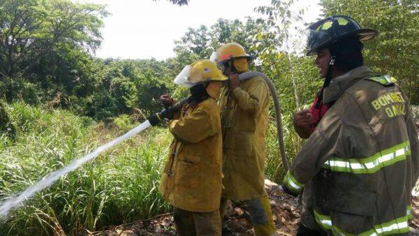 Reporta Bomberos de 20 a 25 incendios forestales, en esta semana