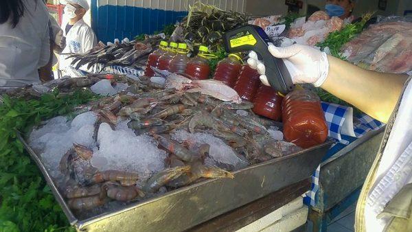 Realiza JS operativo en pescarías de Tuxtepec