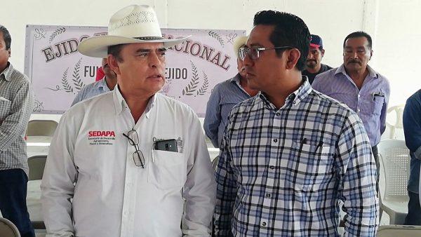 Producción agrícola ha crecido un 5.6% en Oaxaca: SEDAPA