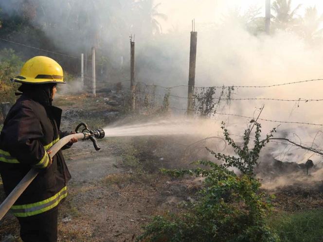 Reportan 53 incendios activos en 16 estados del país