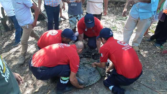 Realiza CEPCO y Red de Humedales taller para mitigar riesgos del Cocodrilo