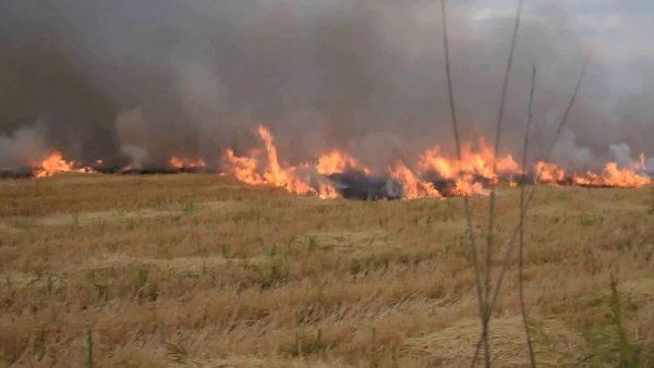Pide PC tomar medidas, para evitar incendios en pastizales