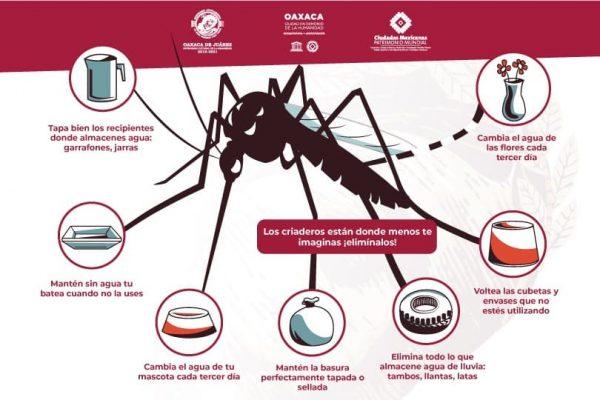 Promueve SSO la participación social para evitar  dengue, zika y chikungunya