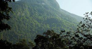 """En riesgo """"cerro Rabón"""" por incendio, edil de Jalapa reclama ayuda del estado"""
