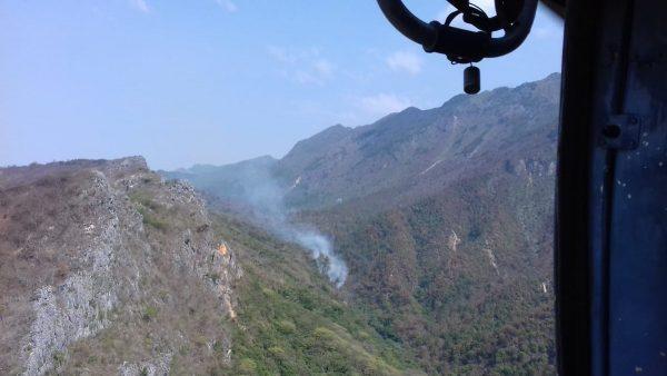Incendio forestal en San Miguel Chimalapa, liquidado al 100%: Coesfo