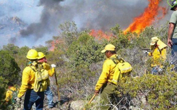 Se emite declaratoria de emergencia para 11 municipios de Oaxaca por incendio forestal