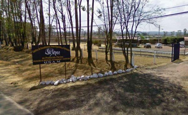 Grupo armado asalta a estudiantes de veterinaria de la UNAM