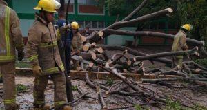 Atienden municipios daños por lluvias: CEPCO