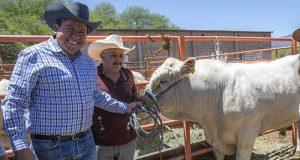 Productores de Oaxaca denuncian fraude en programa federal de Crédito Ganadero