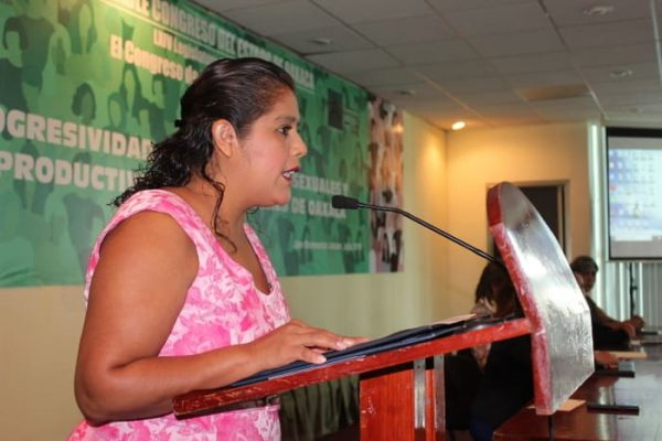 Tipifica Congreso delito de turismo sexual a propuesta de la Diputada Laura Estrada