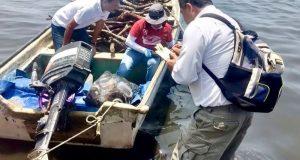 Descarta Semaedeso sargazo en laguna costera en Juchitán