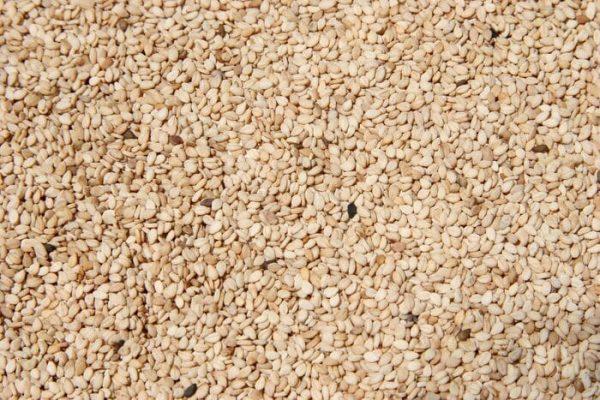 Oaxaca, tercer lugar en producción nacional de ajonjolí