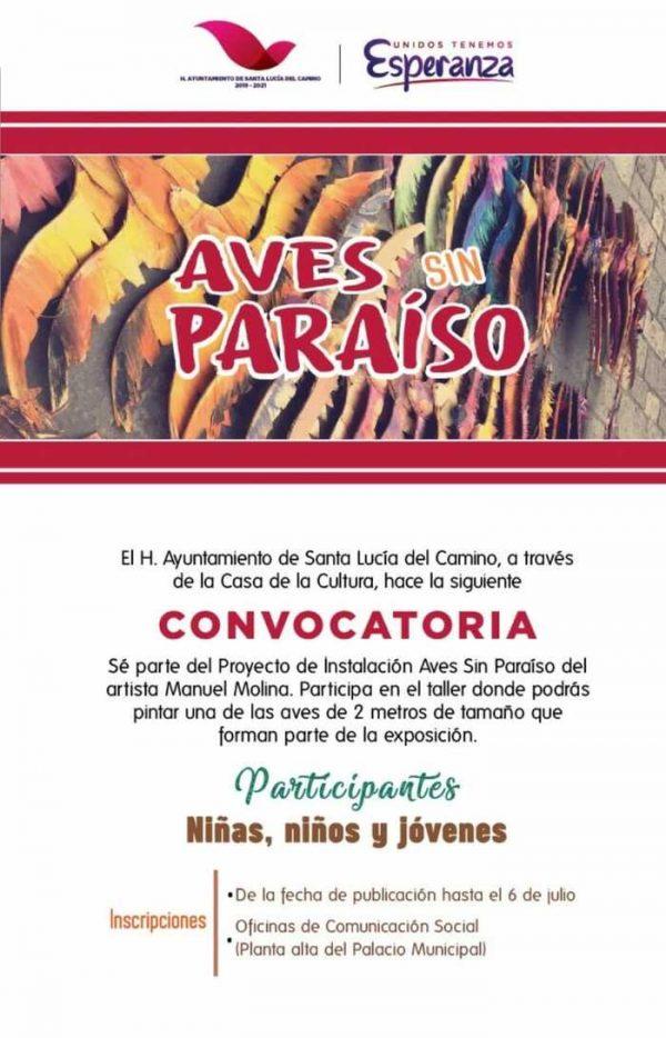 Convoca Santa Lucía del Camino a infantes y jóvenes para pintar Aves Sin Paraíso