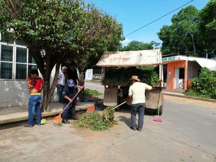 poda arboles chiltepec (2)