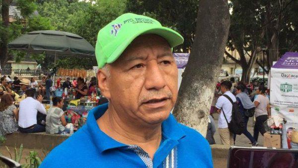 COAO denuncia a edil de Amatengo, por derribo de más de 15 árboles en la plaza cívica