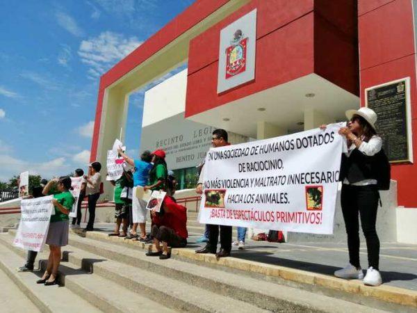 Activistas se suman a iniciativa de ley de protección animal en Oaxaca