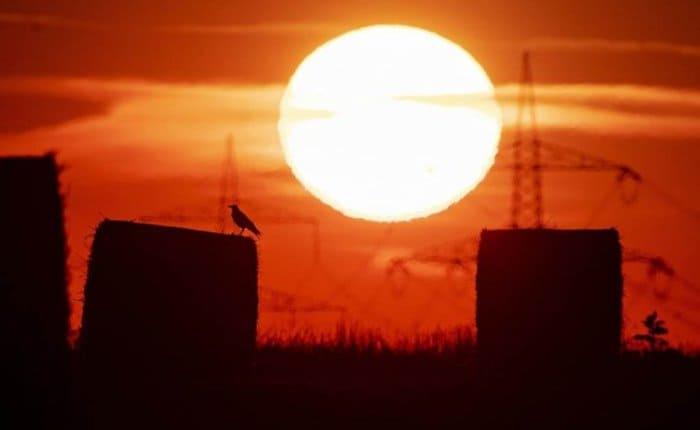 Julio de 2019 fue el mes más caluroso de los últimos 140 años en el planeta