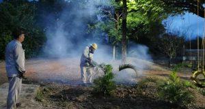 Inicia campaña de fumigación en Chiltepec