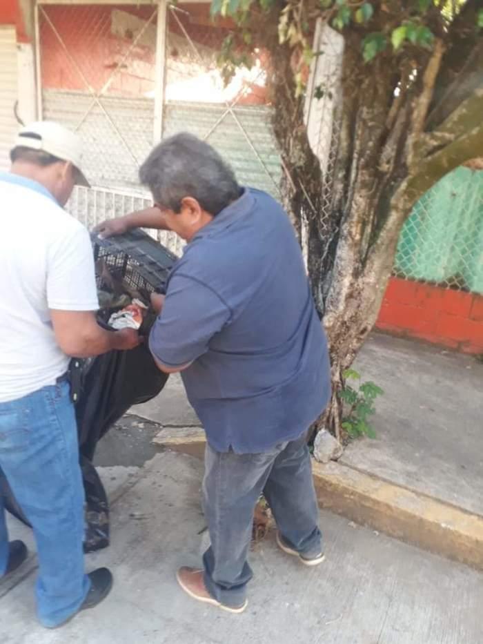 descacharrización chiltepec (5)