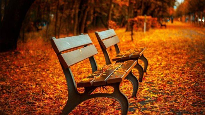 Hoy 23 de septiembre inicia el otoño en México