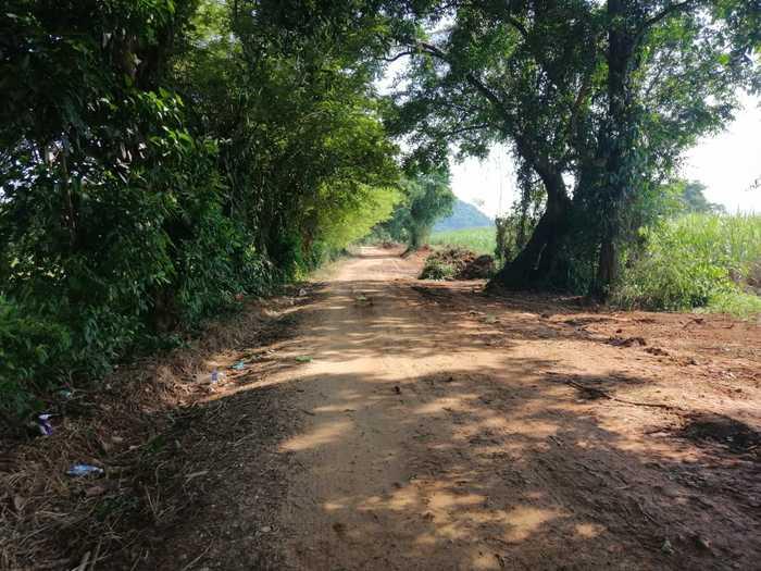 camino real chiltepec (2)