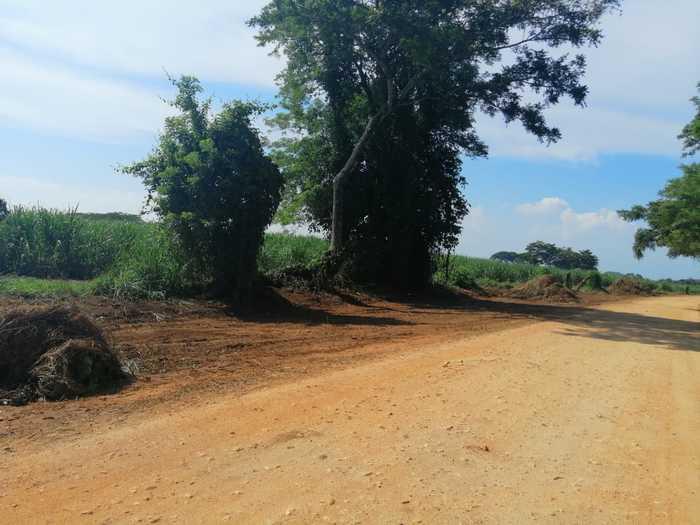 camino real chiltepec (3)