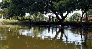 Autoridades desinteresadas en temas ambientales: ECAFFS