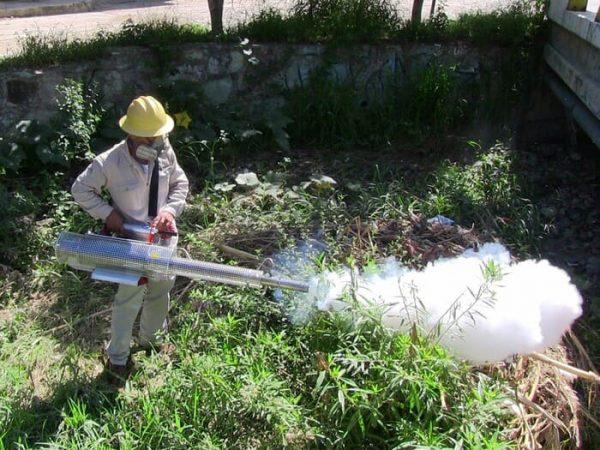 Se nebulizan 263  localidades de riesgo para dengue: SSO