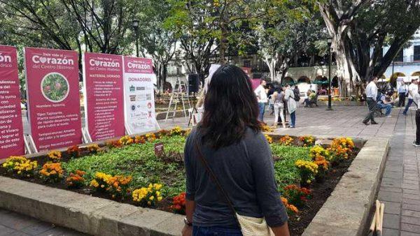Todo listo para recibir al turismo en Oaxaca: Edil