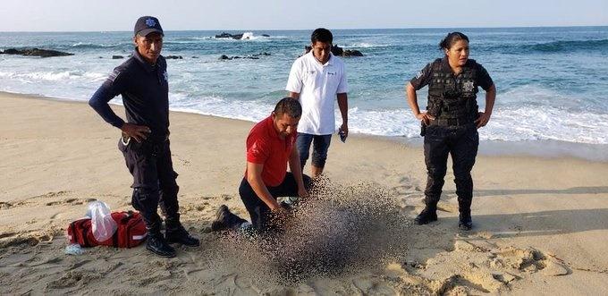 Informa CEPCO deceso de turista poblano en Playa Bacocho