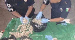 Guardia Nacional asegura más de 17 mil huevos de tortuga en Oaxaca