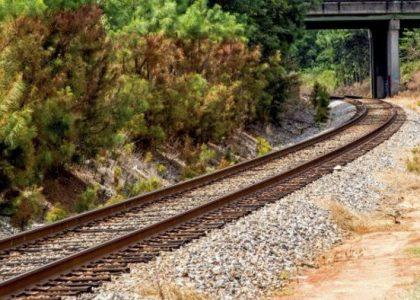 ONG exige que Tren Maya no pase por reservas de la biosfera
