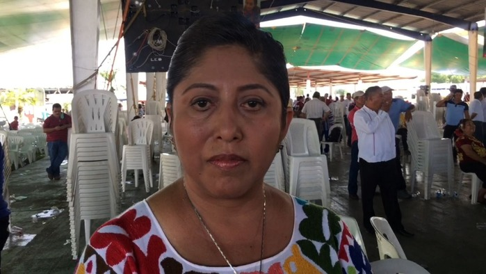 En lugar de aumentar impuestos, hay que atacar evasión fiscal: Victoria Cruz Villar