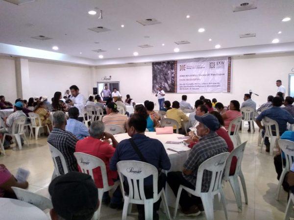 Con 8 foros regionales consultivos concluyó segunda etapa de la elaboración de la ley de Consulta Indígena para Oaxaca
