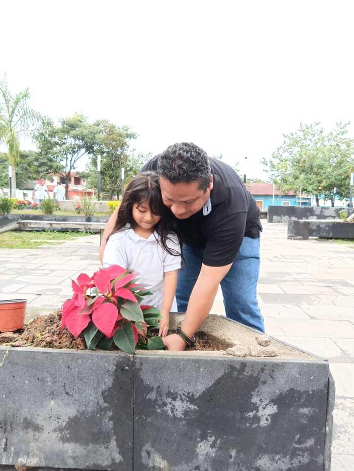plantan nochebuenas chiltepec (3)
