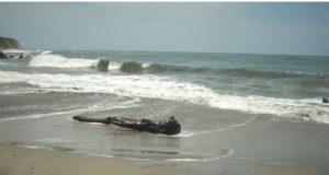Veda sanitaria en playas de Oaxaca por marea roja