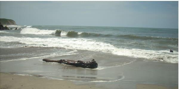 Se mantendrán cerradas playas oaxaqueñas por pandemia