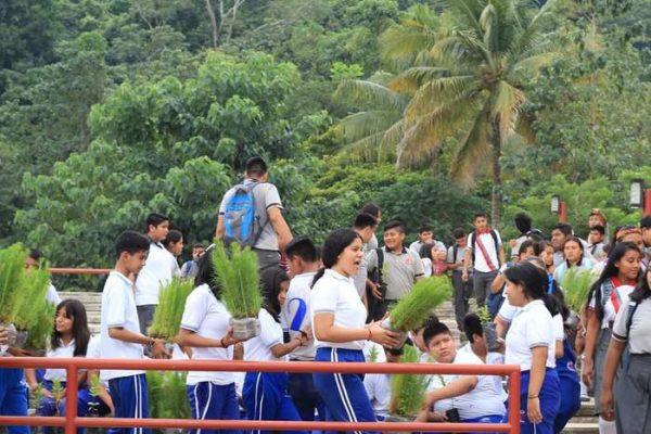 Entrega Ayuntamiento de Chiltepec, árboles a instituciones educativas