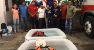 Habilitan refugio para tortugas marinas por marea roja en Huatulco