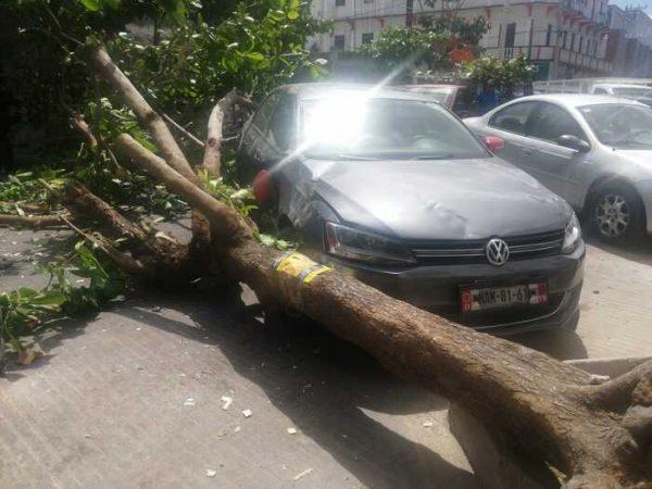 Se presentan ligeros daños por Evento de Norte en Oaxaca: CEPCO