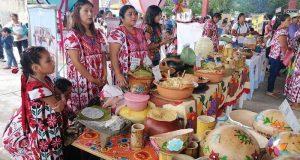 En Valle Nacional, solo el 35% de la población habla lengua materna: Sección 22