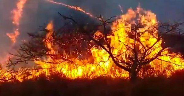Sin afectaciones la Chinantla, por incendios