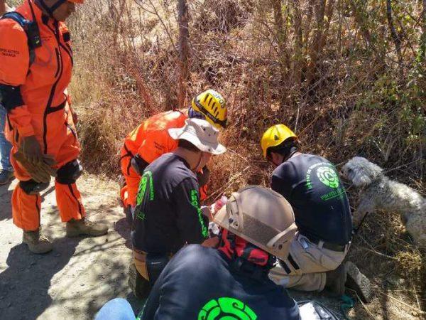 Mediante operativo de búsqueda localizan a menor de edad desaparecido en Huayapam
