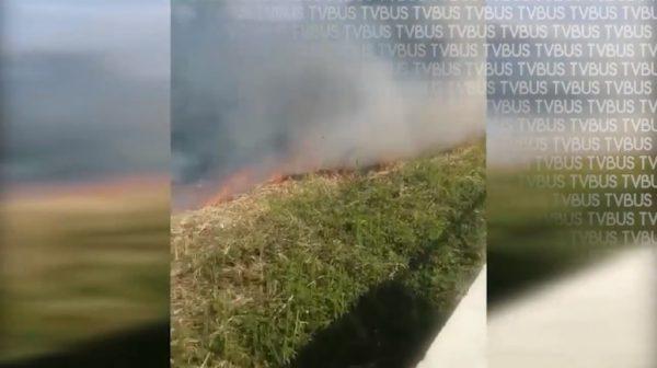 En los últimos 2 meses, atiende bomberos 15 incendios en pastizales