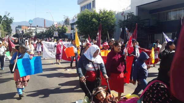 Marchan mujeres integrantes del CIPO en Oaxaca
