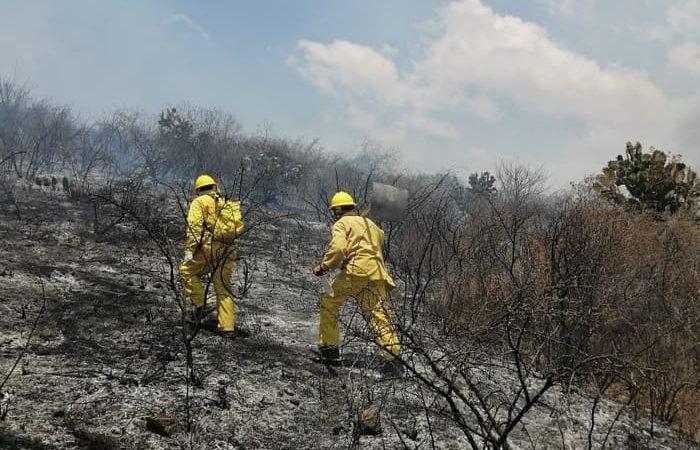 Se declara emergencia en San Pedro y San Pablo Ayutla por incendios