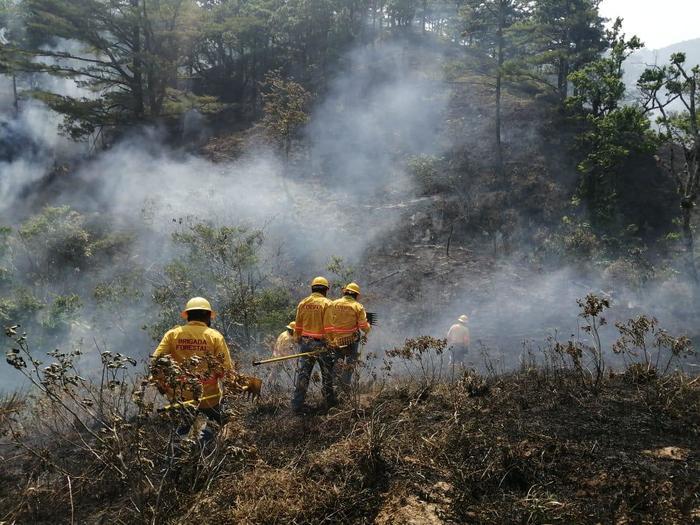 Solicita Gobierno del Estado declaratoria de emergencia para nueve municipios afectados por incendios forestales